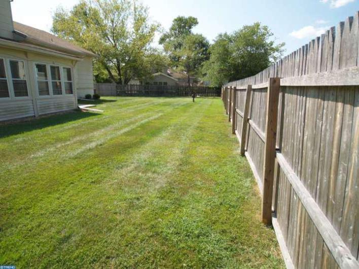 Diary of a DIY mama - Backyard (before)